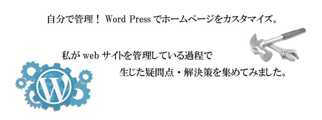 header-wordpress-custm2